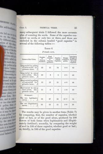 Image of Darwin-F1277-1877-025