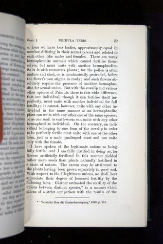 Image of Darwin-F1277-1877-029