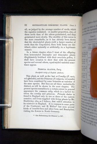 Image of Darwin-F1277-1877-032
