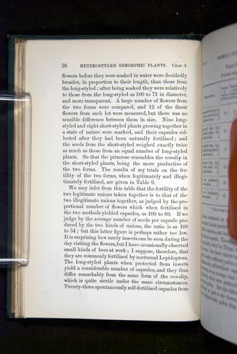 Image of Darwin-F1277-1877-036