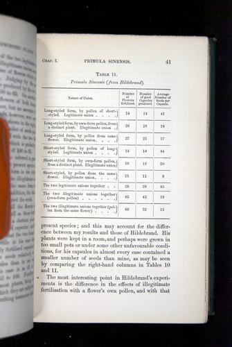 Image of Darwin-F1277-1877-041