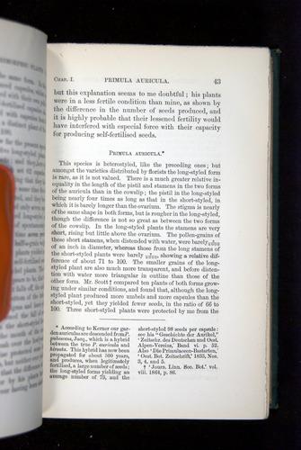 Image of Darwin-F1277-1877-043