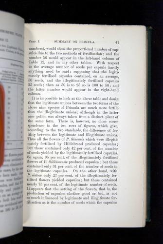Image of Darwin-F1277-1877-047