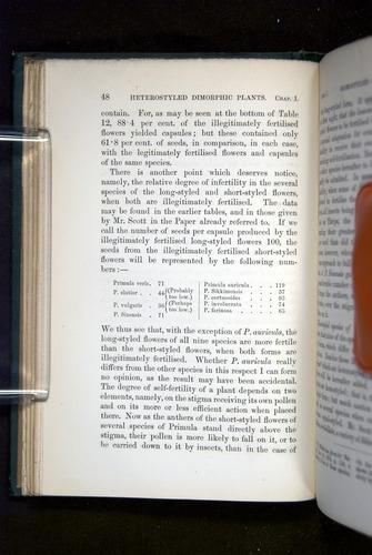 Image of Darwin-F1277-1877-048