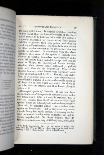 Image of Darwin-F1277-1877-049