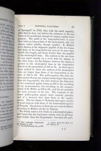 Image of Darwin-F1277-1877-051