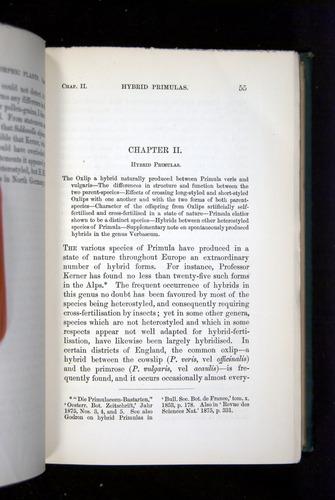 Image of Darwin-F1277-1877-055