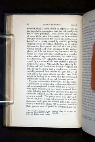 Image of Darwin-F1277-1877-062