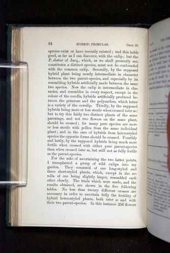 Image of Darwin-F1277-1877-064