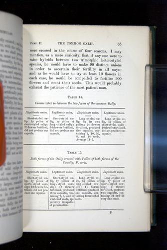 Image of Darwin-F1277-1877-065