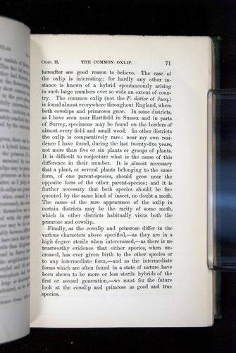 Image of Darwin-F1277-1877-071