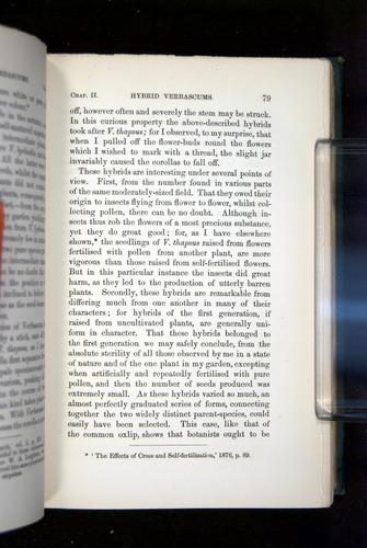 Image of Darwin-F1277-1877-079