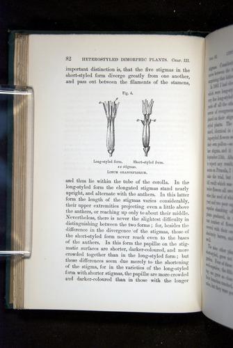 Image of Darwin-F1277-1877-082
