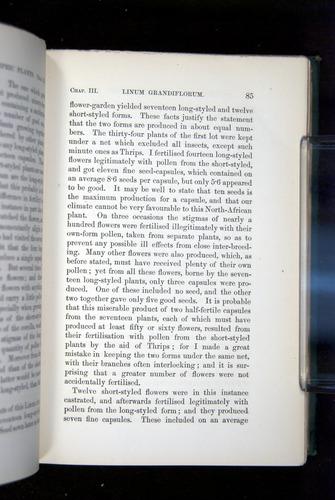 Image of Darwin-F1277-1877-085