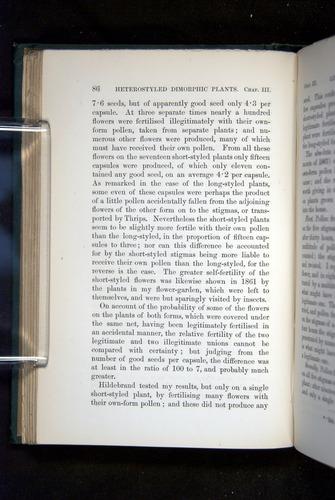 Image of Darwin-F1277-1877-086