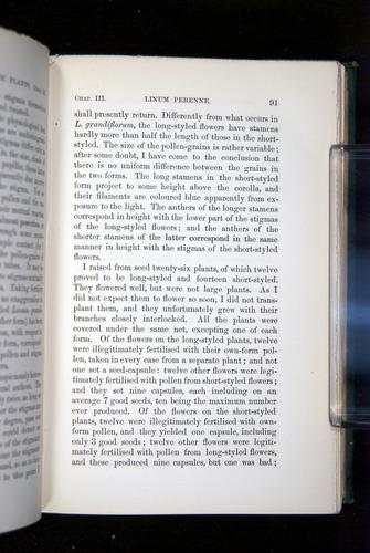 Image of Darwin-F1277-1877-091