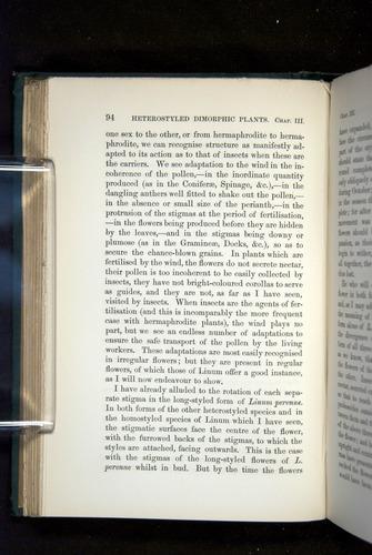 Image of Darwin-F1277-1877-094