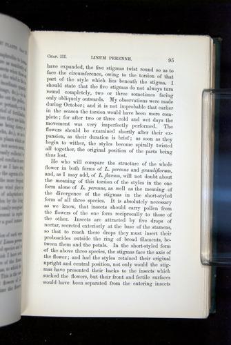 Image of Darwin-F1277-1877-095
