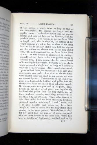 Image of Darwin-F1277-1877-099