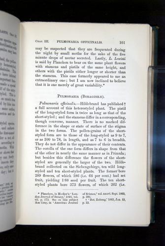 Image of Darwin-F1277-1877-101