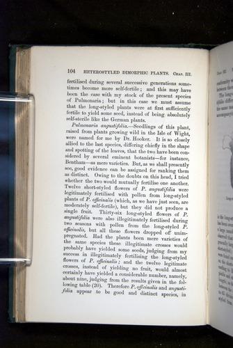 Image of Darwin-F1277-1877-104