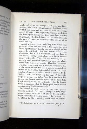 Image of Darwin-F1277-1877-113