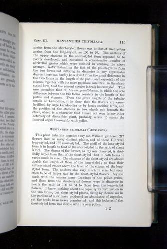 Image of Darwin-F1277-1877-115