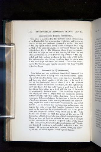Image of Darwin-F1277-1877-116