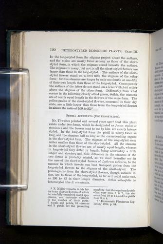 Image of Darwin-F1277-1877-122