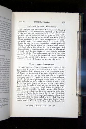 Image of Darwin-F1277-1877-123