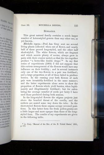 Image of Darwin-F1277-1877-125