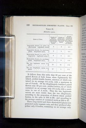 Image of Darwin-F1277-1877-126