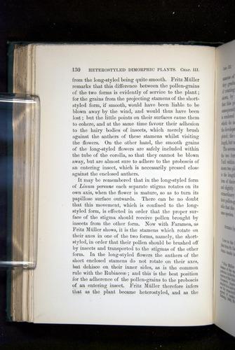 Image of Darwin-F1277-1877-130