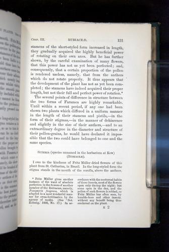Image of Darwin-F1277-1877-131