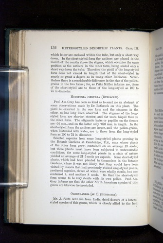 Image of Darwin-F1277-1877-132