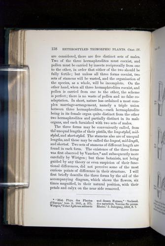 Image of Darwin-F1277-1877-138