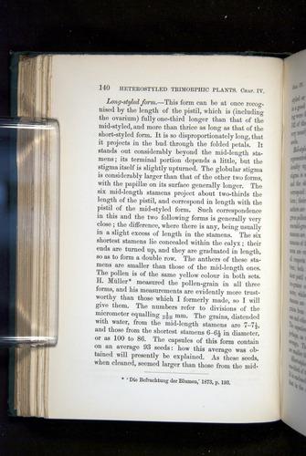 Image of Darwin-F1277-1877-140