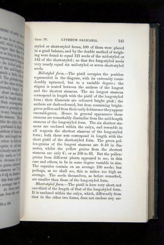 Image of Darwin-F1277-1877-141