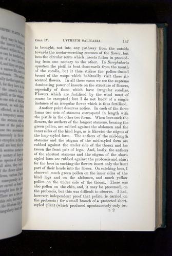Image of Darwin-F1277-1877-147