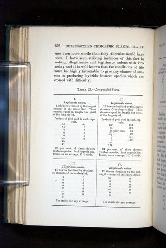 Image of Darwin-F1277-1877-152