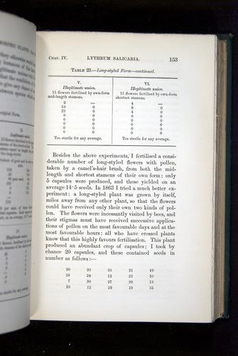 Image of Darwin-F1277-1877-153