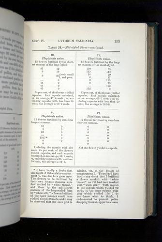 Image of Darwin-F1277-1877-155