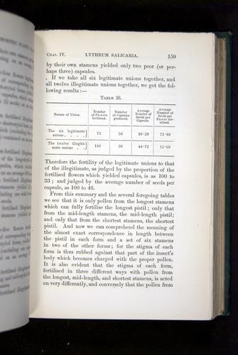Image of Darwin-F1277-1877-159