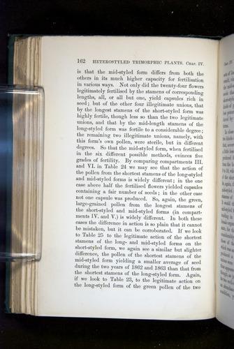 Image of Darwin-F1277-1877-162
