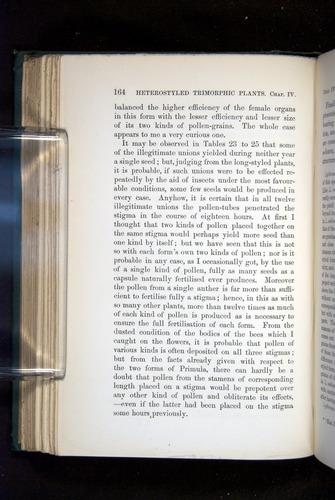 Image of Darwin-F1277-1877-164