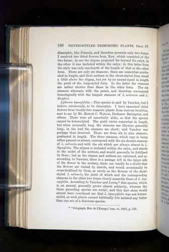 Image of Darwin-F1277-1877-166