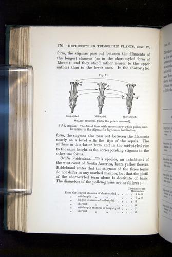 Image of Darwin-F1277-1877-170