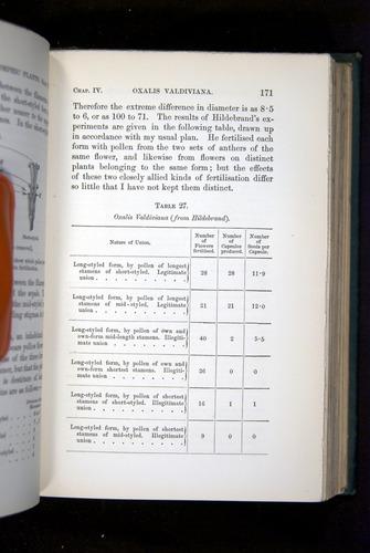 Image of Darwin-F1277-1877-171
