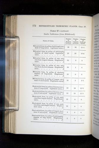 Image of Darwin-F1277-1877-172
