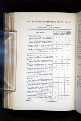 Image of Darwin-F1277-1877-174
